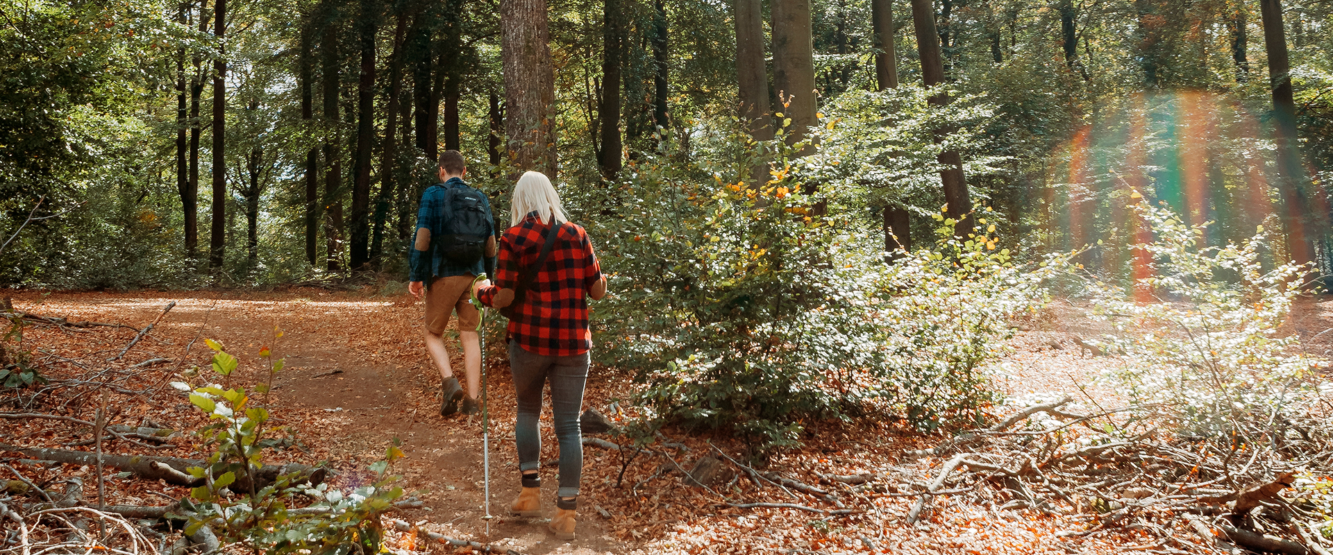 Randonnée dans les bois