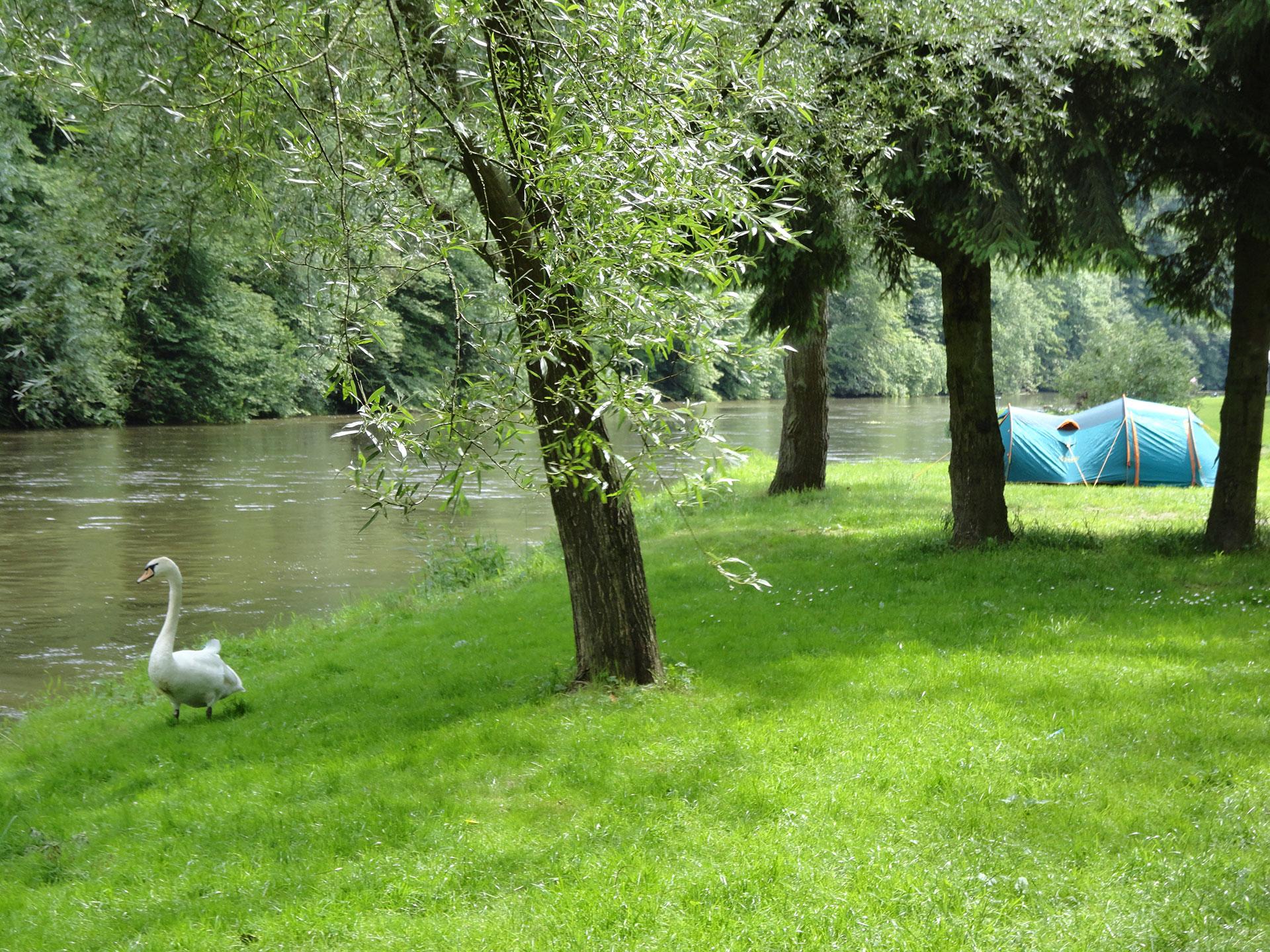 Camping - Ile de Faigneul - Poupehan - tente - caravane - camping-car