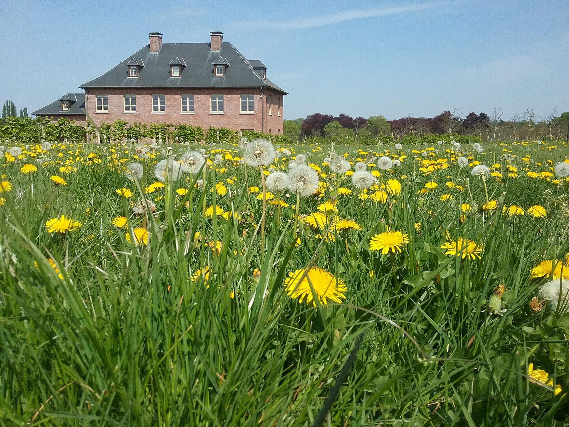 Maison d'hôtes - La Noiseraie - Temploux - 4 épis