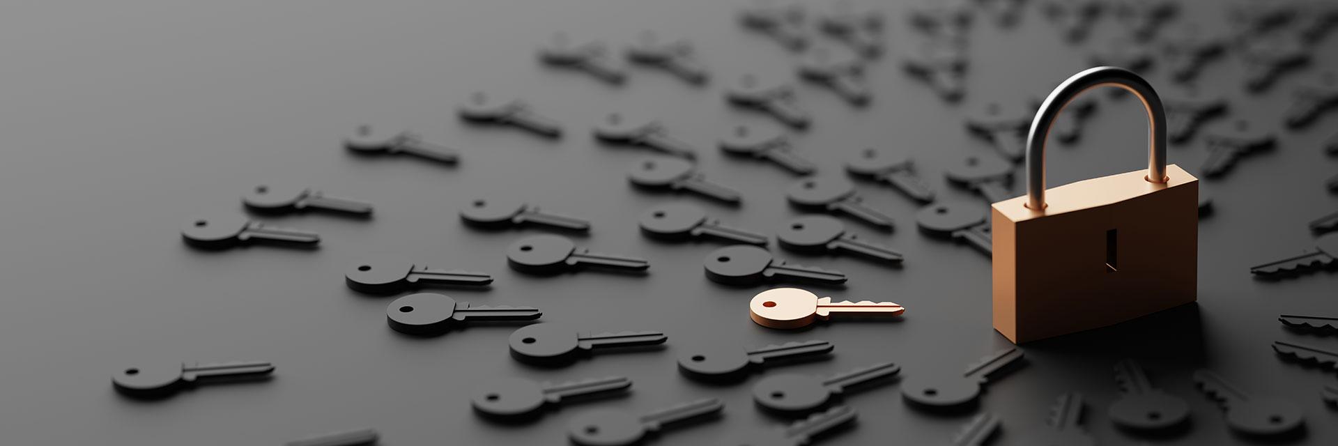 Charte - confidentialité