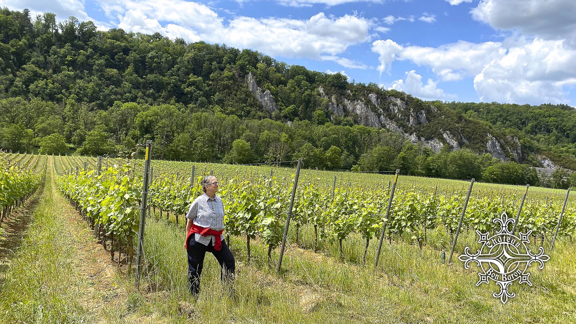 Vignoble Château Bon Baron à Lustin