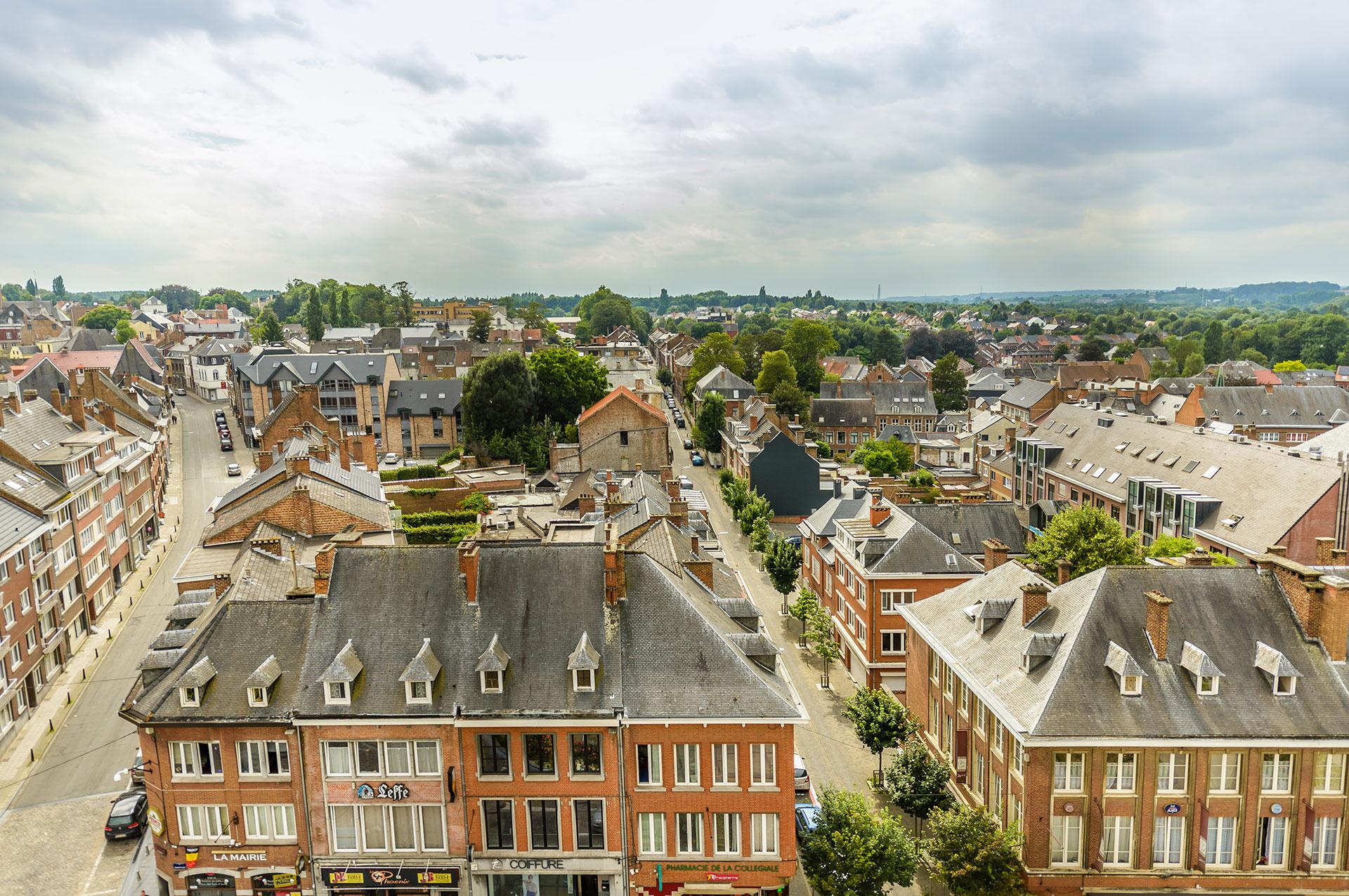 Collégiale Sainte-Gertrude - Nivelles - Vue panoramique