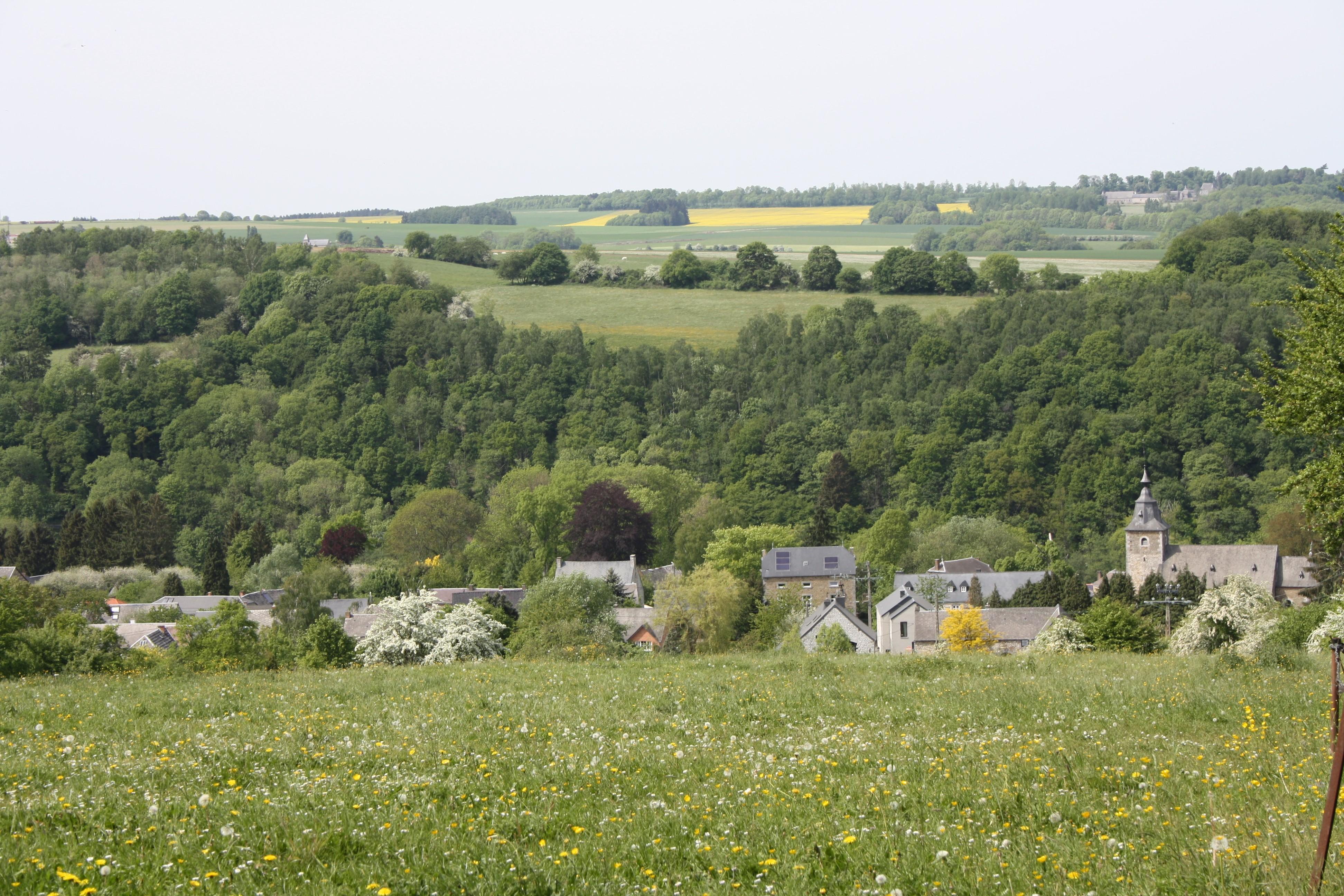 Crupet - Vue d'ensemble - Plus beaux village de Wallonie