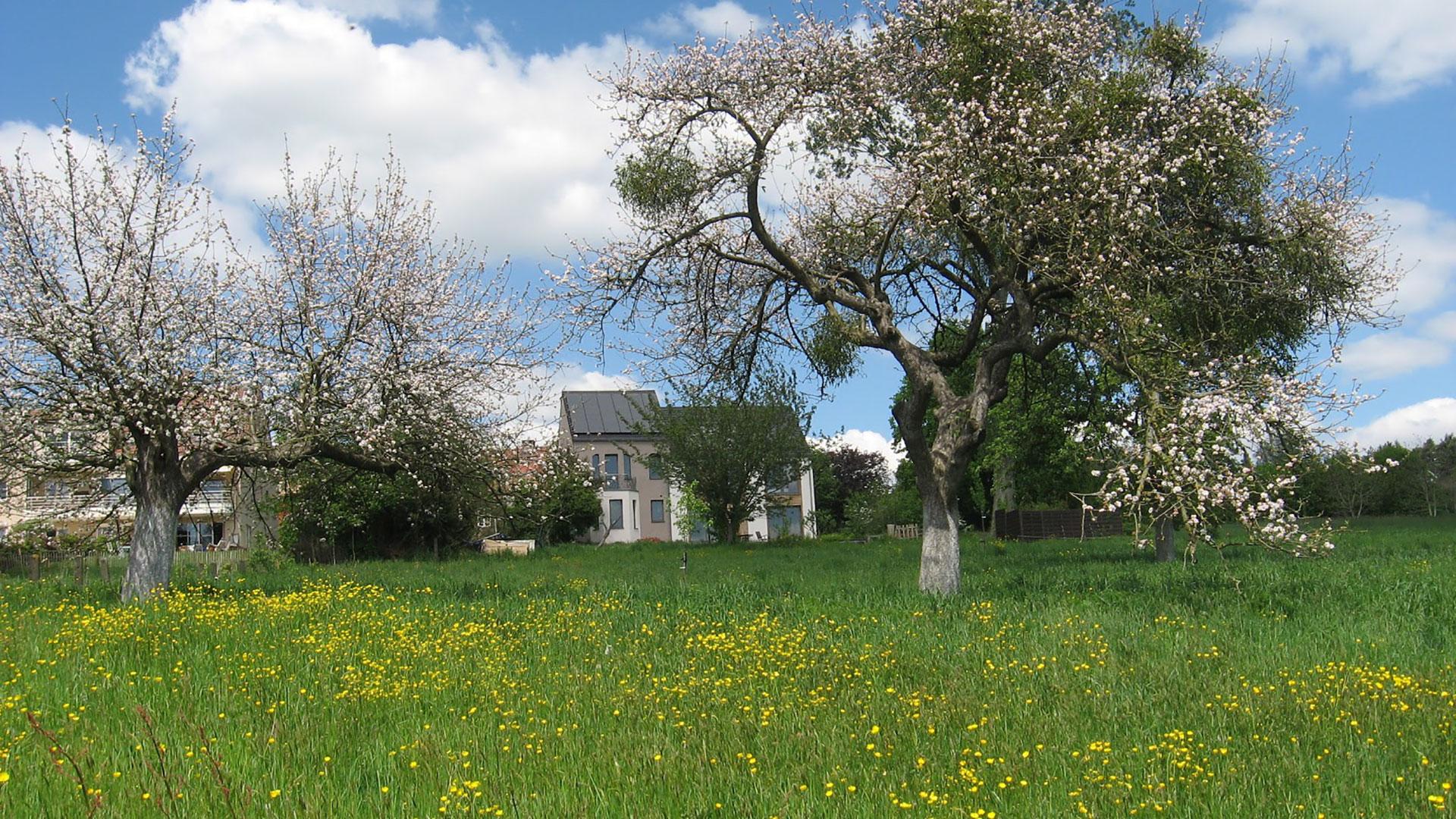 Gîte rural - Le Haut des Fiefs - Braine-le-Château