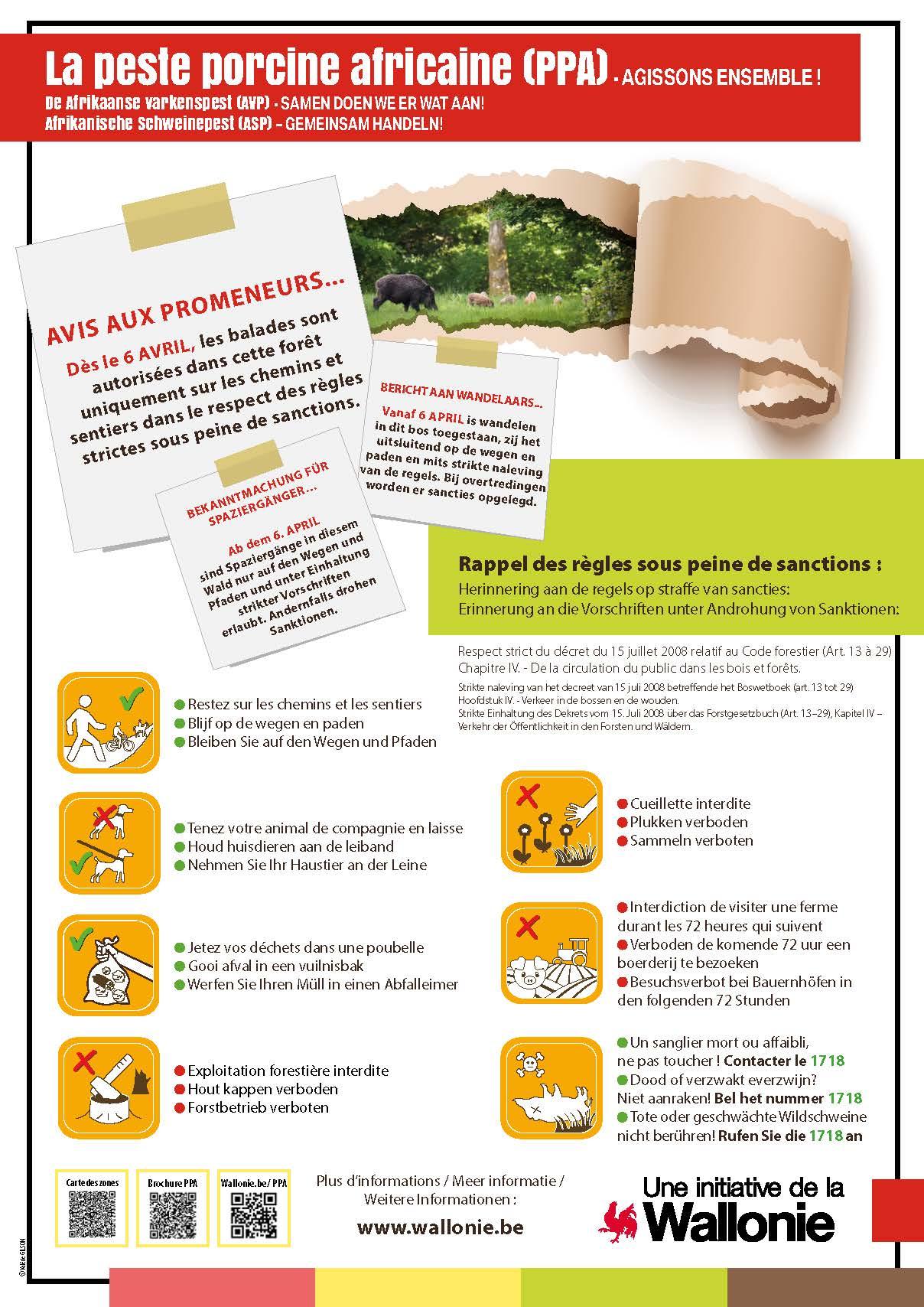 Plakat über die afrikanische Schweinepest mit Hinweisen zu Wanderungen in südbelgischen Wäldern