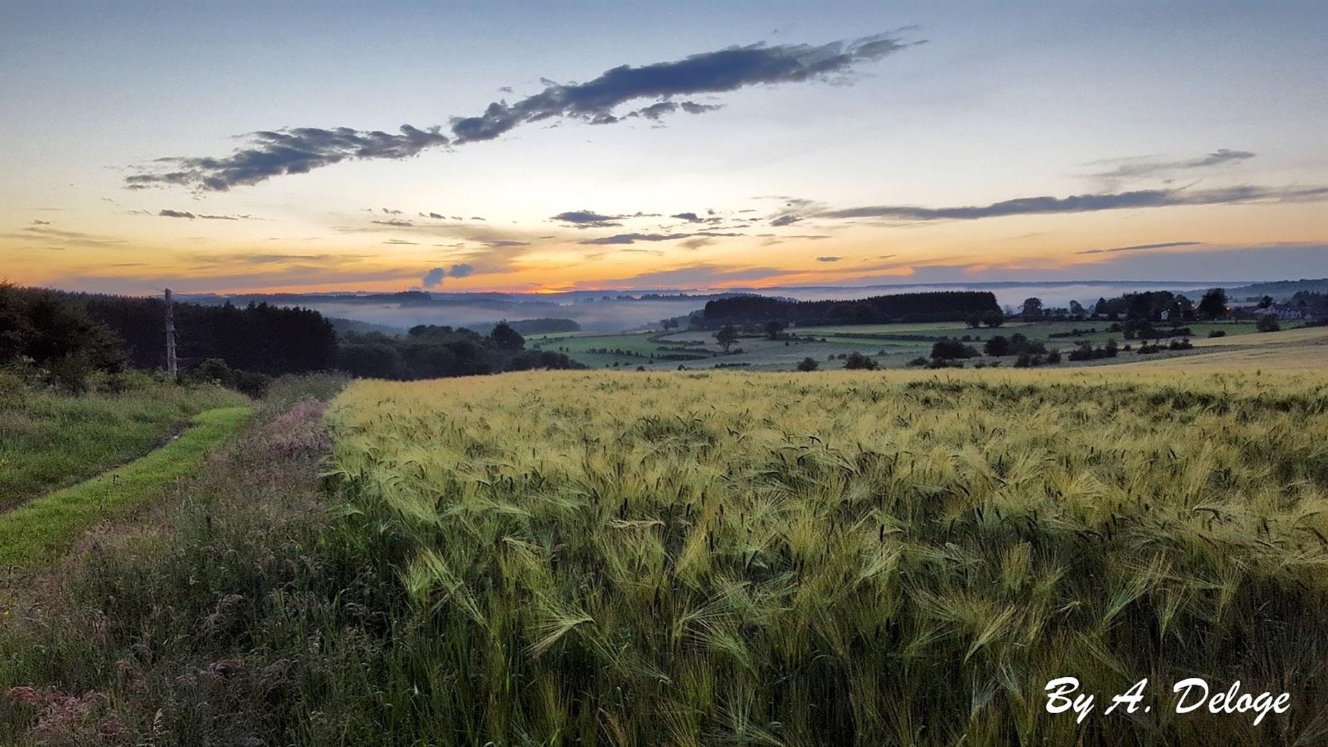 Parc naturel de l'Ardenne méridionale - Porcheresse
