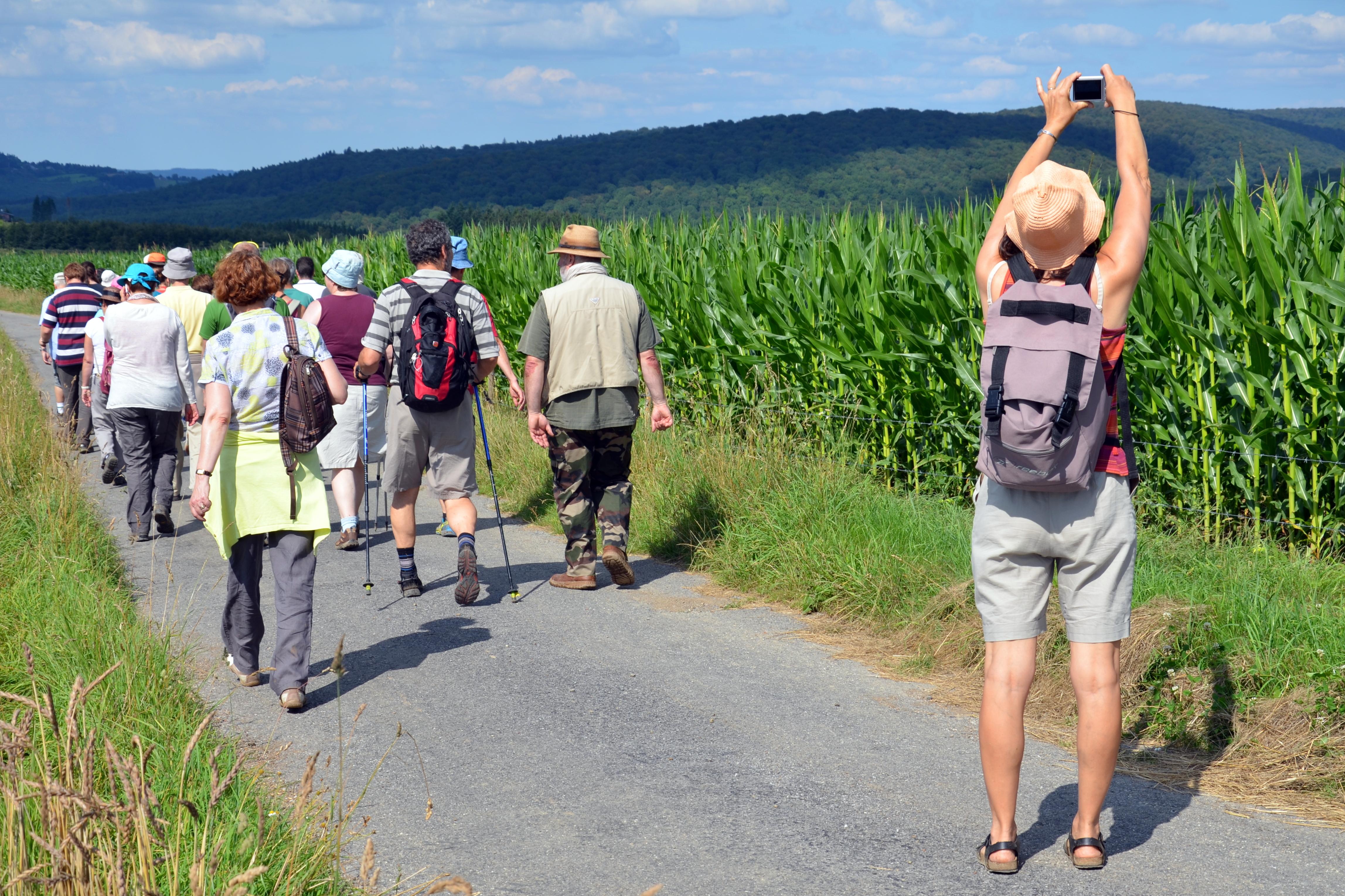 Découvrez les randonailles GTA au coeur de l'Ardenne dans la région du Luxembourg belge