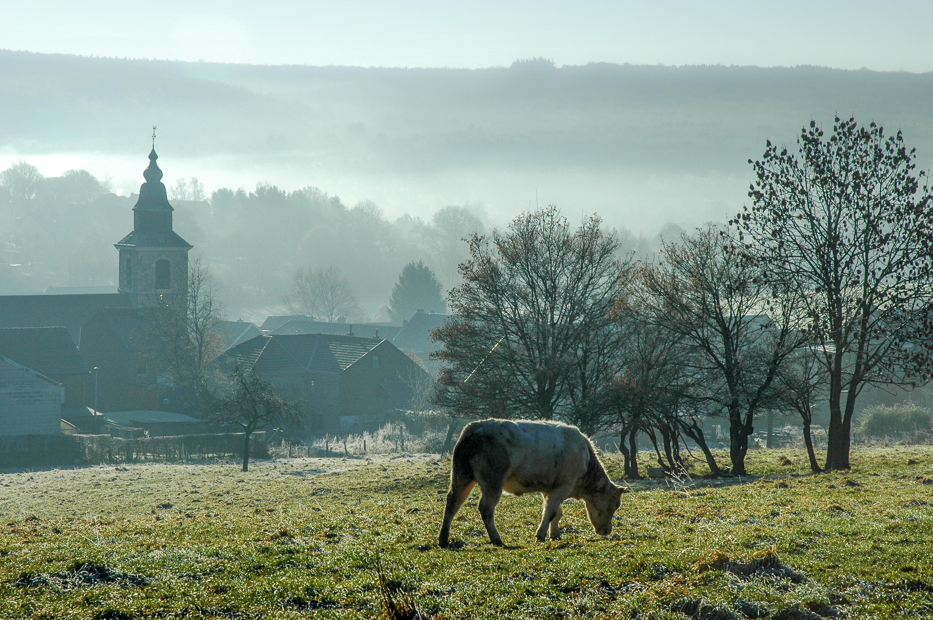 Vue sur Membach (Baelen) dans le Pays de Vesdre