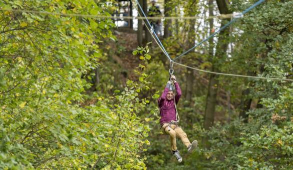 homme réalisant un parcours d'accro-branche en forêt en Wallonie