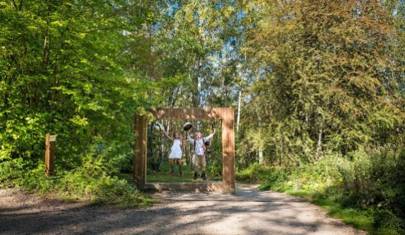 Parc Chlorophylle - Aywaille - Cadre en bois