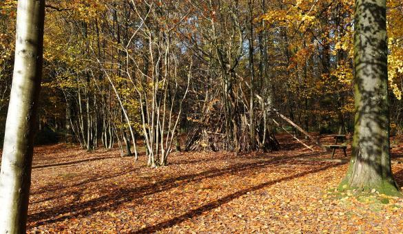 Petit Bois des Légendes ardennaises - Redu - Arboretum - Cabane