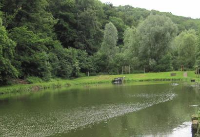 étangs de la julienne - Comme un poisson dans l'eau | Promenade avec géocaches à Resteigne - Wallonie Terre d'Eau