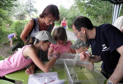1000 espèces - Festivités à l'Aquascope de Virelles - Ete 2021