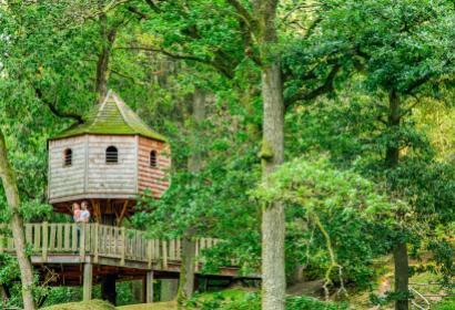 Tree huts in the Domaine provincial de Chevetogne