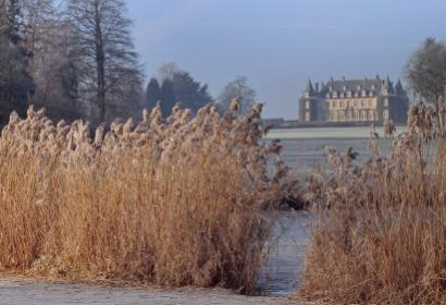 Domaine - Solvay - Château - Hulpe - hiver