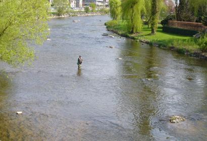 Amblève - Remouchamps - pêcher - pêche - pêcheur