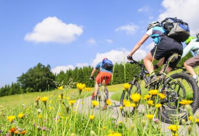 Randonnée à vélo - AdobeStock