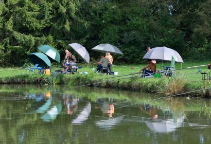 Pêche - étangs - Wallonie Terre d'Eau