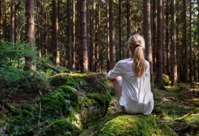Genießen Sie ein Waldbad auf dem Gelände der Grotten von Han-sur-Lesse