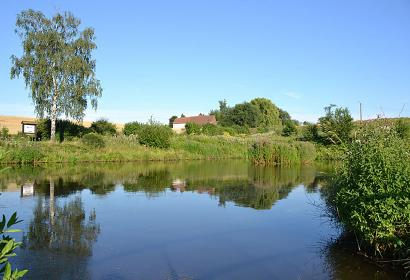 étangs - Liévin - site écologique - Rebecq