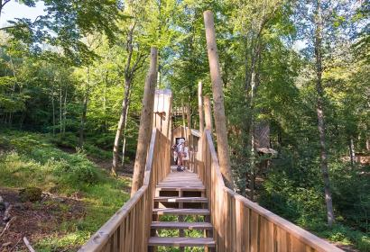 Parc Chlorophylle - Aywaille - Passerelle parcours cîme arbres