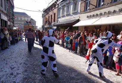 Carnaval de Waremme