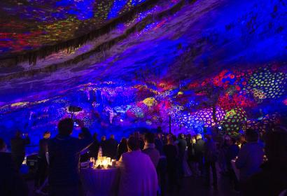 Grottes de Han - Dinner in the Caves show