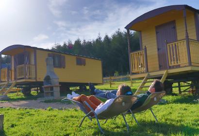 Meublé de vacances - L'Instant Ch'Oizy - Félin pour l'autre - Oizy