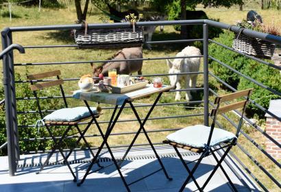 Gîte rural - Le Fenil aux Ânes - Walcourt