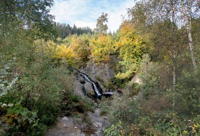 Malmedy - Cascade du Bayeront - nature