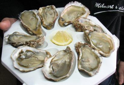 assiette de 9 huîtres « fines de claire » de Marennes-Oléron en dégustation
