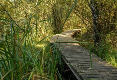 Parc naturel de la Vallée de l'Attert - PNVA