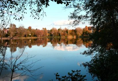 Réserve naturelle - Strépy-Bracquegnies - La Louvière