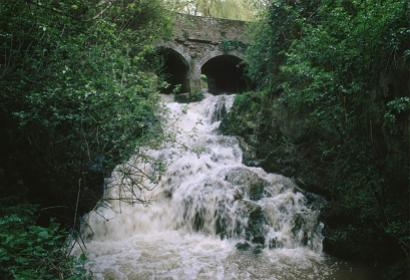 Pêcher - étangs - cascade - Coeurcq - Tubize