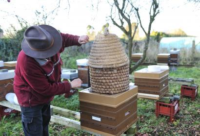 Le Rucher du Haut-Pays à Honnelle - apiculteur - ruches