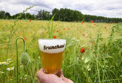 Brasserie - Brunehaut - Tournai - anciennes recettes - brassage
