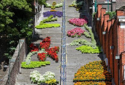 Bueren en Fleurs: evento floreale sulla Montagna di Bueren a Liegi