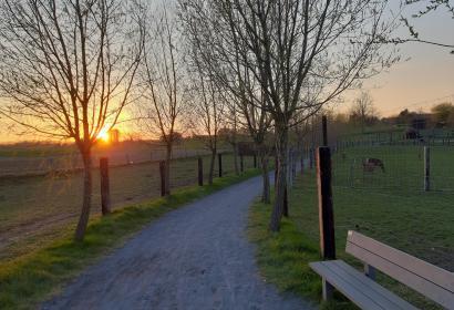 Promenade animalière à La Ligule à Mignault