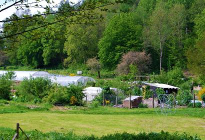 Les Jardins du Moulin - Tellin - serres - potager