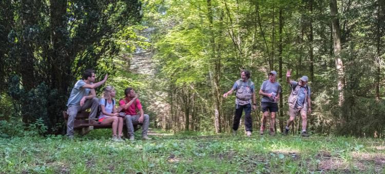 Sentier GR - Abbayes Trappistes - Wallonie - balade - promenade - randonnée