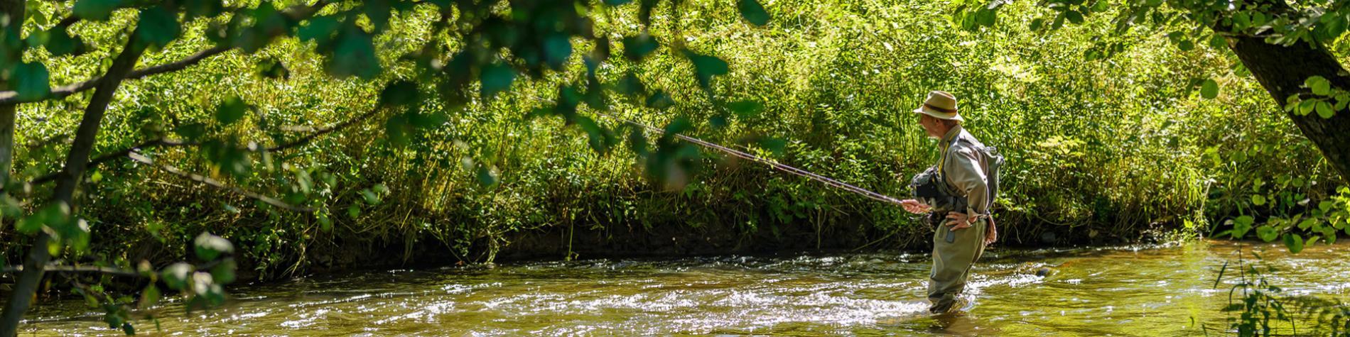 Pêche - balade - forêt - Mirwart