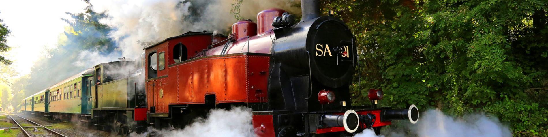 Chemin de Fer à vapeur des Trois Vallées - Mariembourg - Treignes