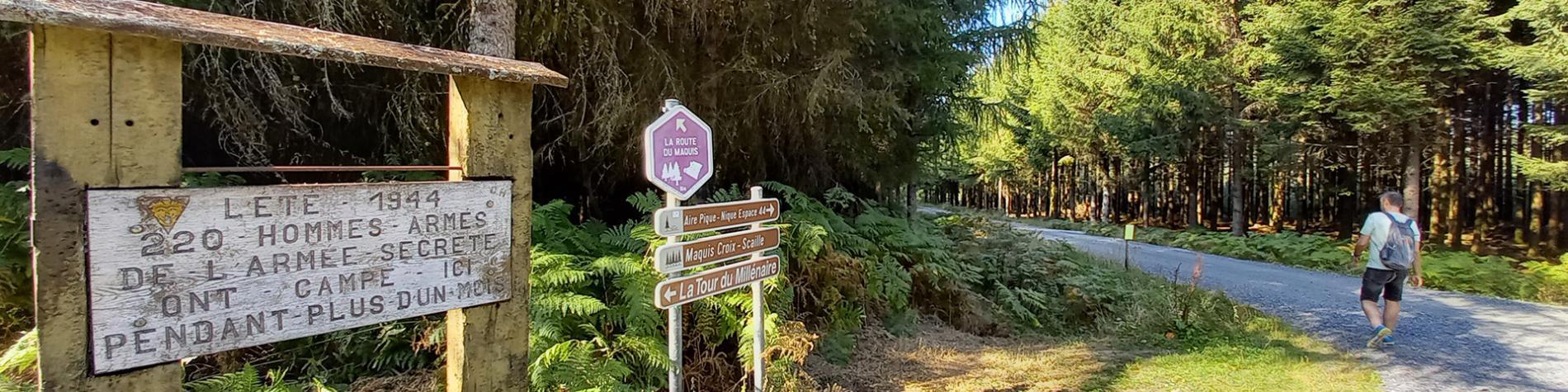 Croix Scaille - Balade pédestre insolite à Gedinne - Sur les pas des Maquisards