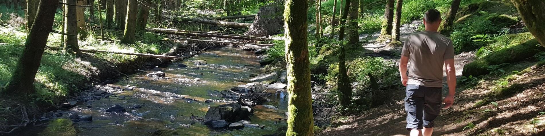 Achouffe - Vallée des Fées
