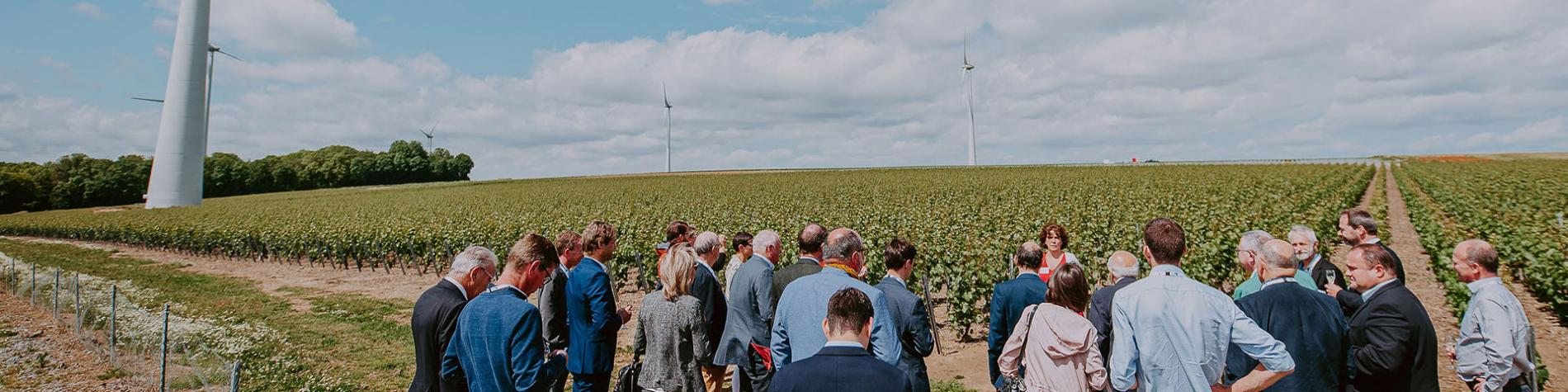 Visit'Entreprise - Domaine du Chant d'Eole - vignoble - Mons - Brut Blanc de Blancs - Elixir Saint-Georges