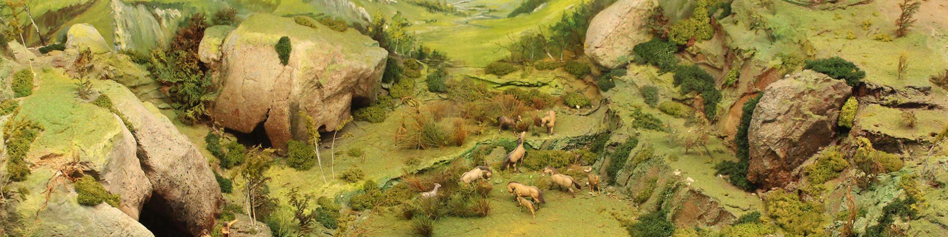 Musée - Pays d'Ourthe-Amblève - Comblain-au-Pont - Diorama - paléoenvironnement