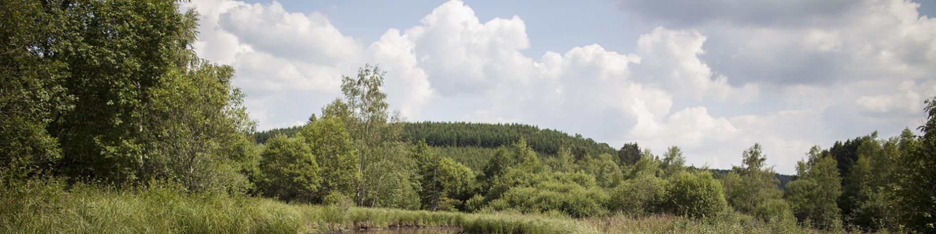 Parc Naturel - Haute-Sûre - Forêt d'Anlier - Province de Luxembourg - promenade - Maison du Parc