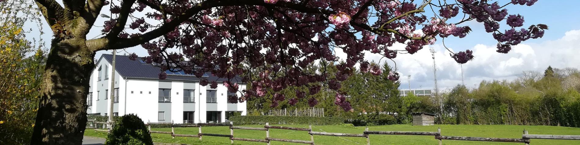 Maison d'hôtes - Eupen Inn - Lac de la Gileppe - 4 chambres - Cantons de l'Est
