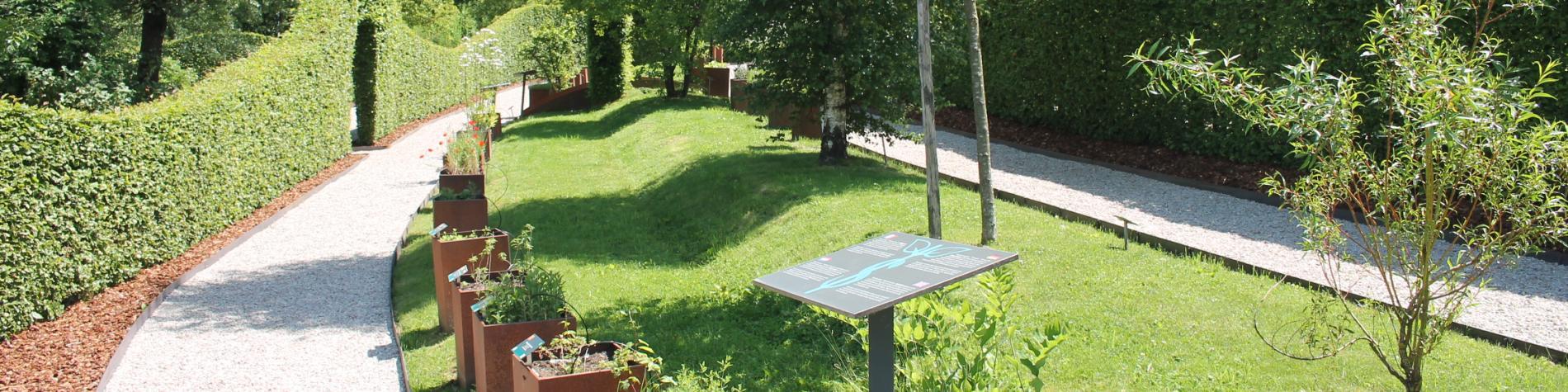 Découvrez Herba Sana, jardin des plantes médicinales à visiter, Elsenborn