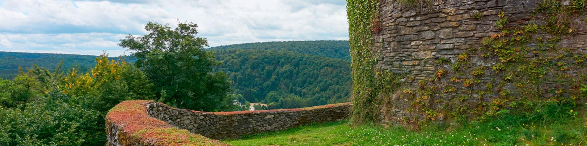 Château - Herbeumont - ruines - crête rocheurse - semois - médiéval - Jehan de Rochefort - maison de Walcourt